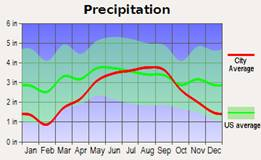 Line graph showing precipitation in inches